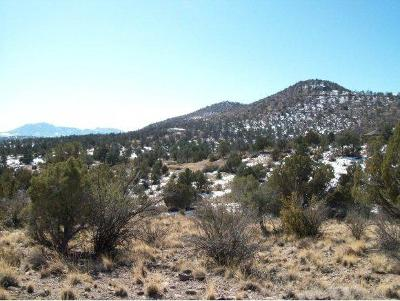 Chino Valley Residential Lots & Land For Sale: Hidden Canyon Road