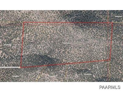 Yavapai County Residential Lots & Land For Sale: 808 Sierra Verde Ranch