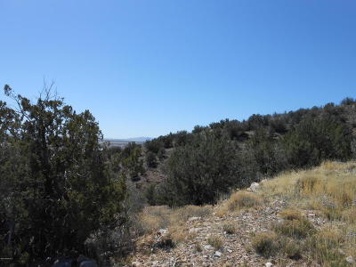 Chino Valley Residential Lots & Land For Sale: 00 Valley View