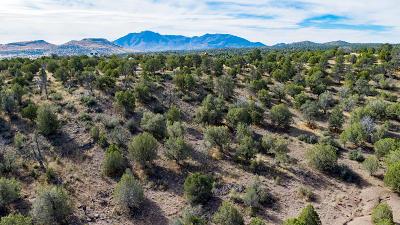 Prescott Residential Lots & Land For Sale: W Sarah Road