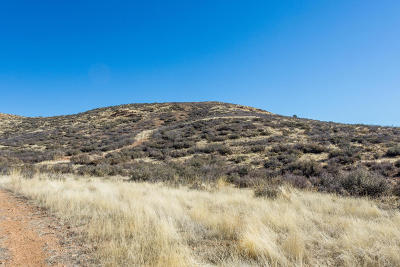 Prescott Valley Residential Lots & Land For Sale: 0001 N Howling Court
