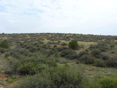 Dewey-Humboldt Residential Lots & Land For Sale: 01 Wolf Road