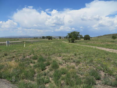 Chino Valley Residential Lots & Land For Sale: Xxxxx N Highway 89