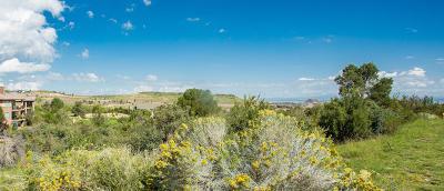 Prescott Lakes Residential Lots & Land For Sale: 1302 Northridge Drive