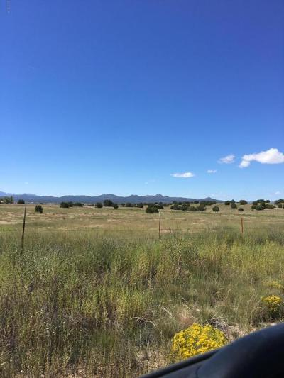 Paulden Residential Lots & Land For Sale: 26405 N Patricia