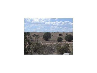 Paulden AZ Residential Lots & Land For Sale: $10,500