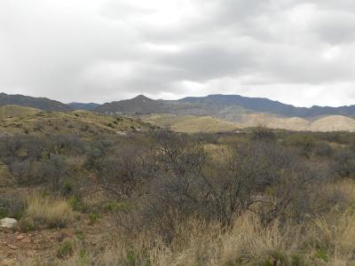 Clarkdale Residential Lots & Land For Sale: 1 Wildhorse Acres