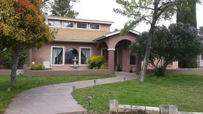 Camp Verde Single Family Home For Sale: 1343 N Powderhorn Rd