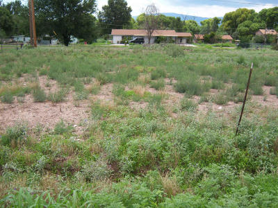 Camp Verde Residential Lots & Land For Sale: 3427 E Aberdovey Drive
