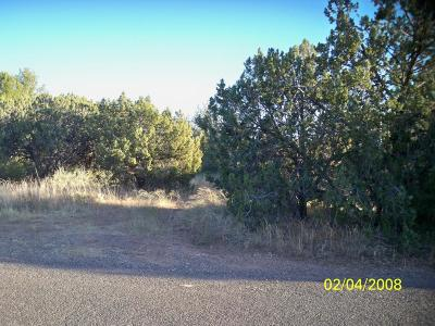 Residential Lots & Land For Sale: 4845 E Cochise Drive