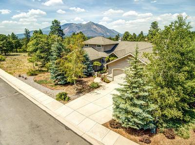 Flagstaff Single Family Home For Sale: 991 N Lone Oak Way