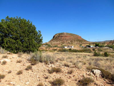 Cornville Residential Lots & Land For Sale: 2330 S Sexton Ranch Rd