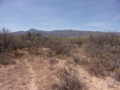 Camp Verde Residential Lots & Land For Sale: 2860 S Diamond S Rd