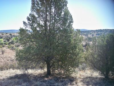 Residential Lots & Land For Sale: 4935 N Calamity Jane