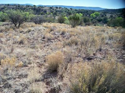Residential Lots & Land For Sale: 4950 E Golden Gulch