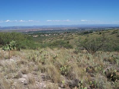 Clarkdale Residential Lots & Land For Sale: 1780 Tavasci Rd.