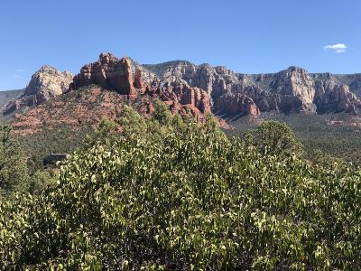 Sedona Residential Lots & Land For Sale: 251 Brewer Sky Ridge Estates 19 Lots Rd