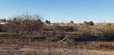 Camp Verde Residential Lots & Land For Sale: Hwy 260