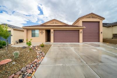 Yavapai County Single Family Home For Sale: 2103 Gold Rush Lane