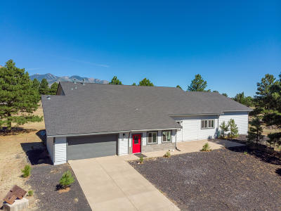 Flagstaff Single Family Home For Sale: 8225 N Colt Drive