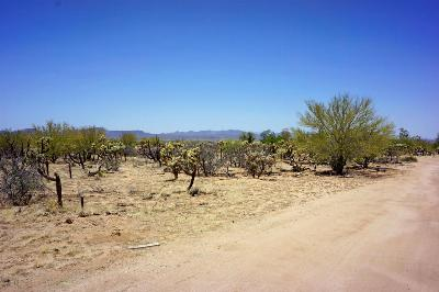Residential Lots & Land For Sale: 14868 W Lost Valley Loop