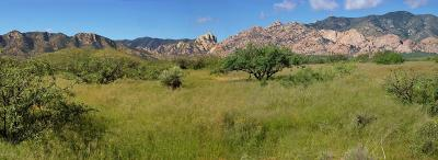Cochise Residential Lots & Land For Sale: W Ironwood Road #23+ac