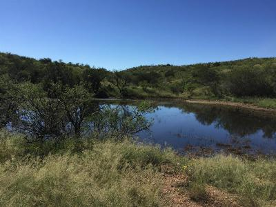 Green Valley Residential Lots & Land For Sale: 22193 S Red Cloud Mine Road