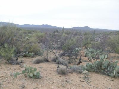 Residential Lots & Land For Sale: 15349 E Rincon Creek Ranch Road