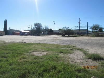 Benson Residential Lots & Land For Sale: 287 W 4th Street