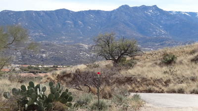 Tucson Residential Lots & Land For Sale: E Horseshoe Bend Road