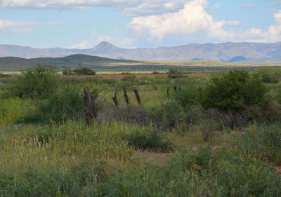 Cochise County Residential Lots & Land For Sale: S Bell Ranch Road
