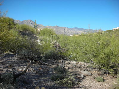 Residential Lots & Land For Sale: 4880 N Rock Canyon Road