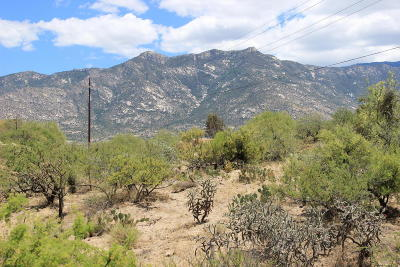 Catalina Residential Lots & Land For Sale: 5225 E Cloud Nine Drive