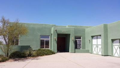 Sahuarita Single Family Home For Sale: 18701 S Copper Cave Drive