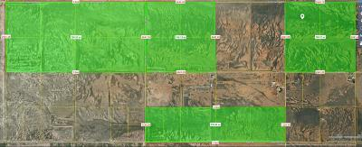 Willcox Residential Lots & Land For Sale: 800 AC Off Kansas Settlement Road