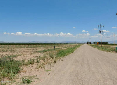 Willcox Residential Lots & Land For Sale: 320 Ac On Sulphur Springs Road #1