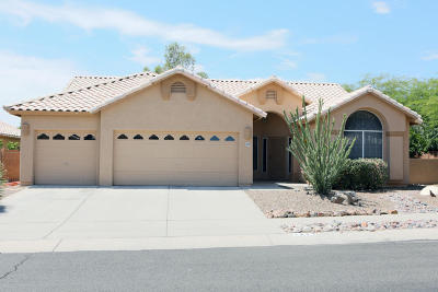 Single Family Home Active Contingent: 11429 N Silver Pheasant Loop