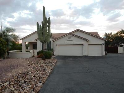 Desert Vista (1-205) Single Family Home For Sale: 11517 N Verch Way
