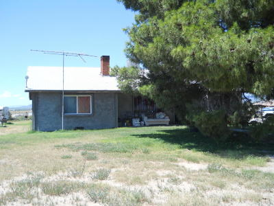 Cochise County Single Family Home For Sale: 537 S Taylor Road
