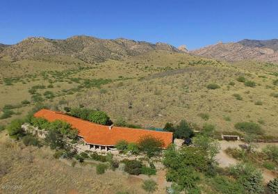 Cochise County Single Family Home For Sale: 151 S Cochise Stronghold Road