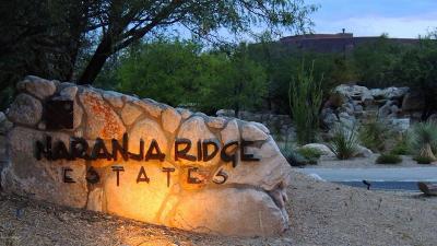 Residential Lots & Land For Sale: 11115 N Desert Whisper Way #2