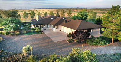 Sonoita Single Family Home For Sale: 393 Curly Horse Road