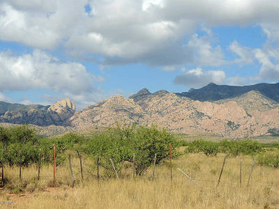 Cochise County Residential Lots & Land For Sale: 400 Ac On Ironwood Rd Road #1