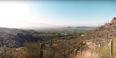 Tucson Residential Lots & Land For Sale: 6555 N Thimble Pass