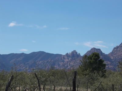 Cochise Residential Lots & Land For Sale: N Cochise Stronghold Road