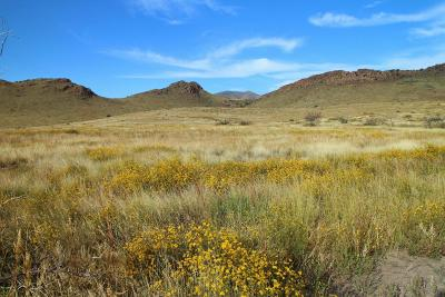 Willcox Residential Lots & Land For Sale: S Pinery Canyon Road