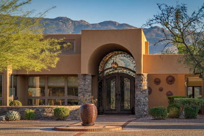 Tucson Single Family Home For Sale: 13240 E Deep Well Road