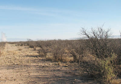 Cochise County Residential Lots & Land For Sale: Dragoon Rd And Highway 191