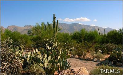 Pima County Residential Lots & Land For Sale: 4848 W Camino De Manana