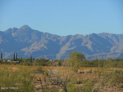 Tucson Residential Lots & Land For Sale: 4260 S Melpomene Way